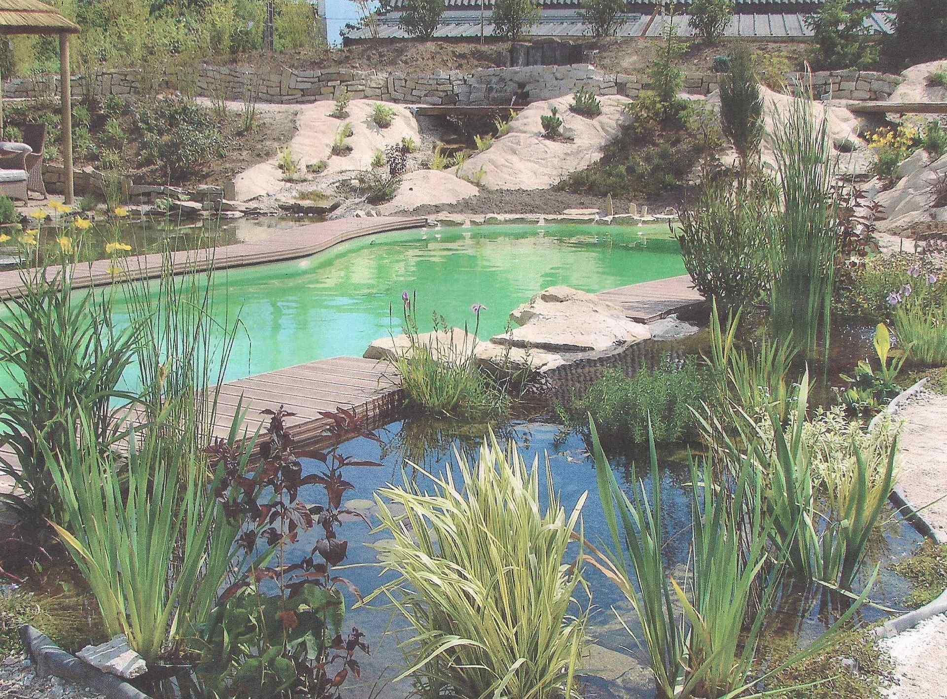 piscine béton revêtement pour eau verte
