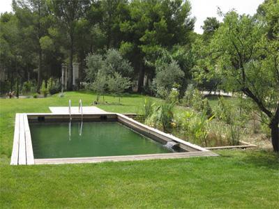 piscine naturelle margelles bois et filtration écologique